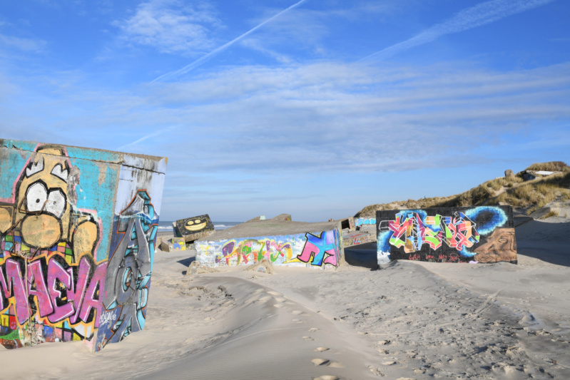 Berck powerkite dream all in one Bunk1_10