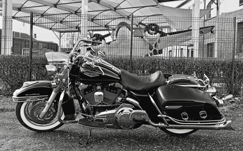 Road King uniquement, combien sur Passion-Harley  - Page 24 8c82d810