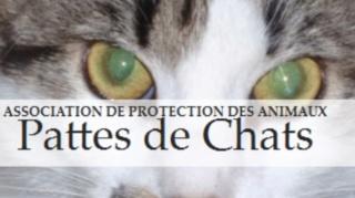 Contact - Solidarité pour les animaux en danger Pattes11