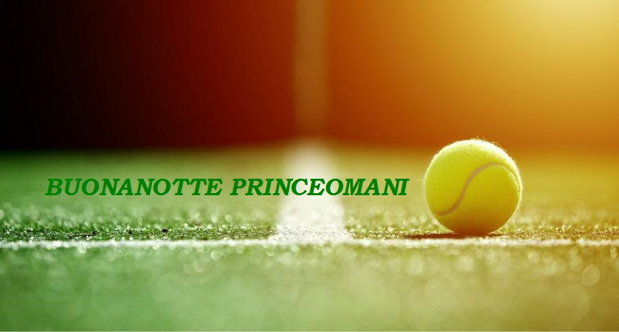 PRINCE TENNIS FANS CLUB...sei appassionato Prince? Official Thread - Pagina 13 Pallin10