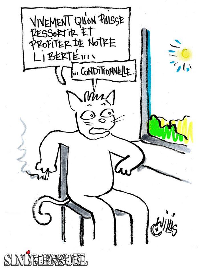 Coronavirus Infos au Quotidien - Page 21 93217210