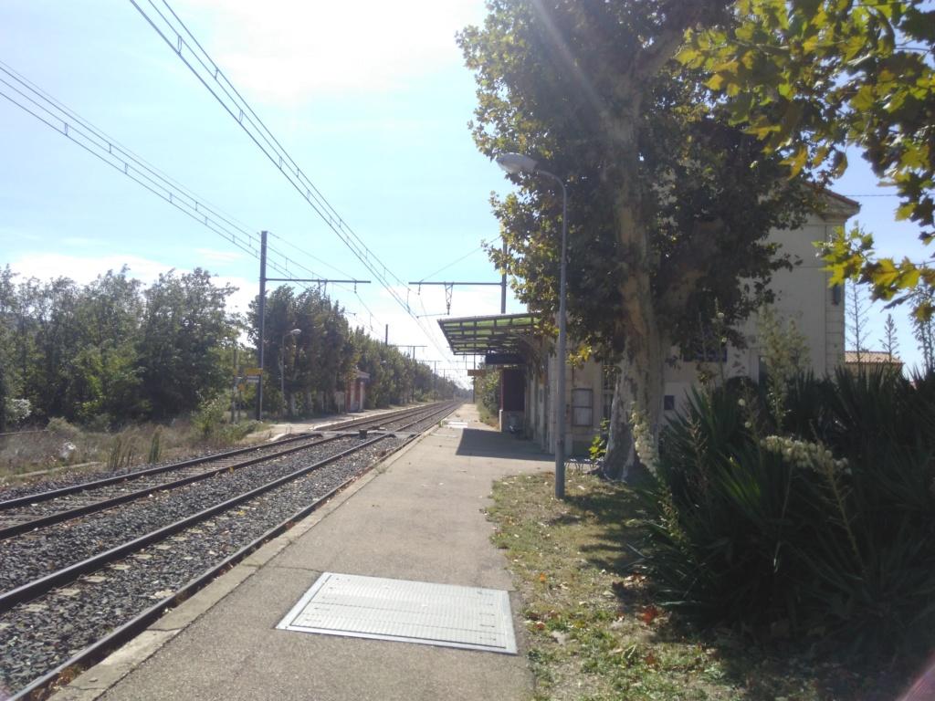 Pk 48,964 : Gare de Lamanon (13) Img_2014