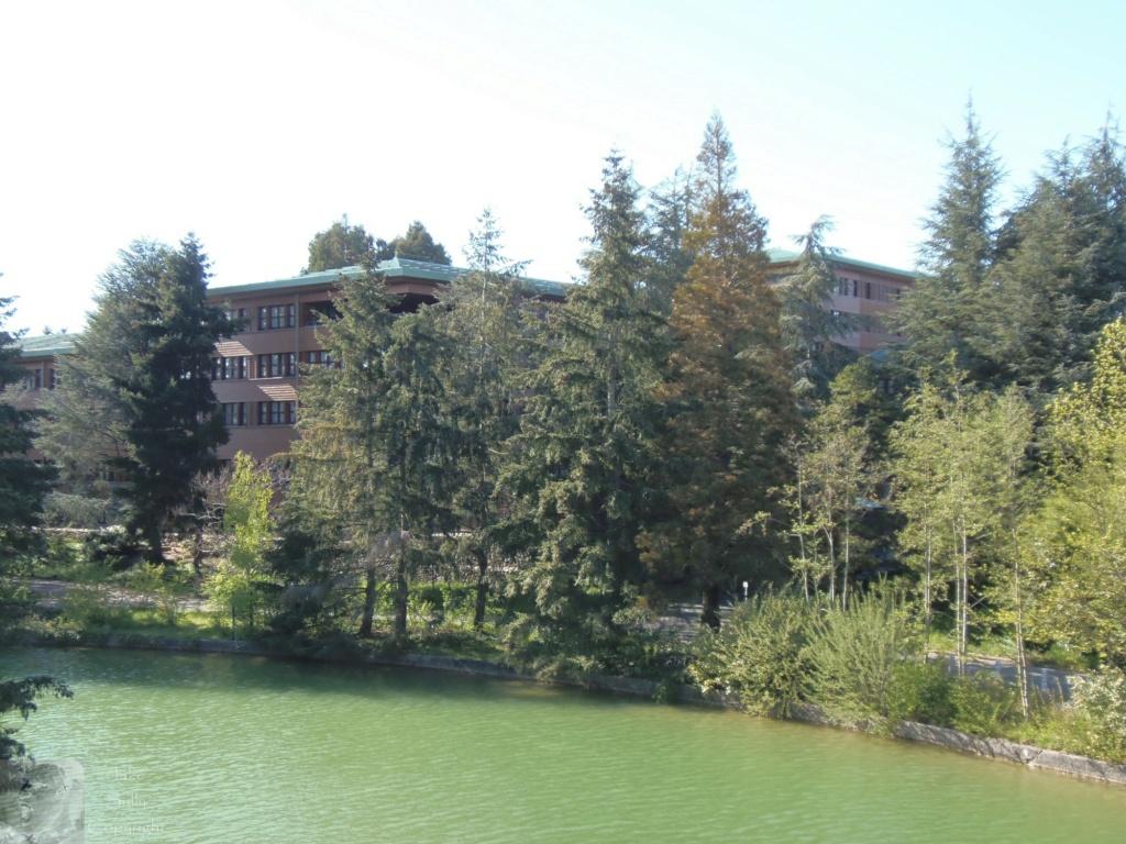 Disney's Sequoia Lodge - Rénovation - Page 2 29_cop12