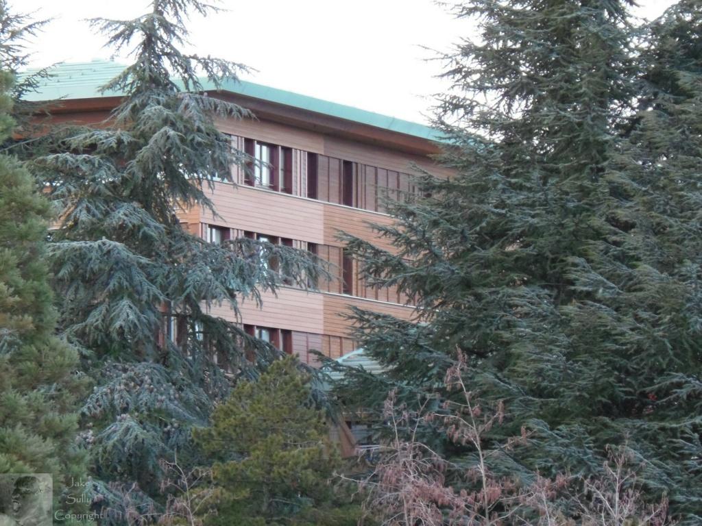 Disney's Sequoia Lodge - Rénovation - Page 2 58_cop10