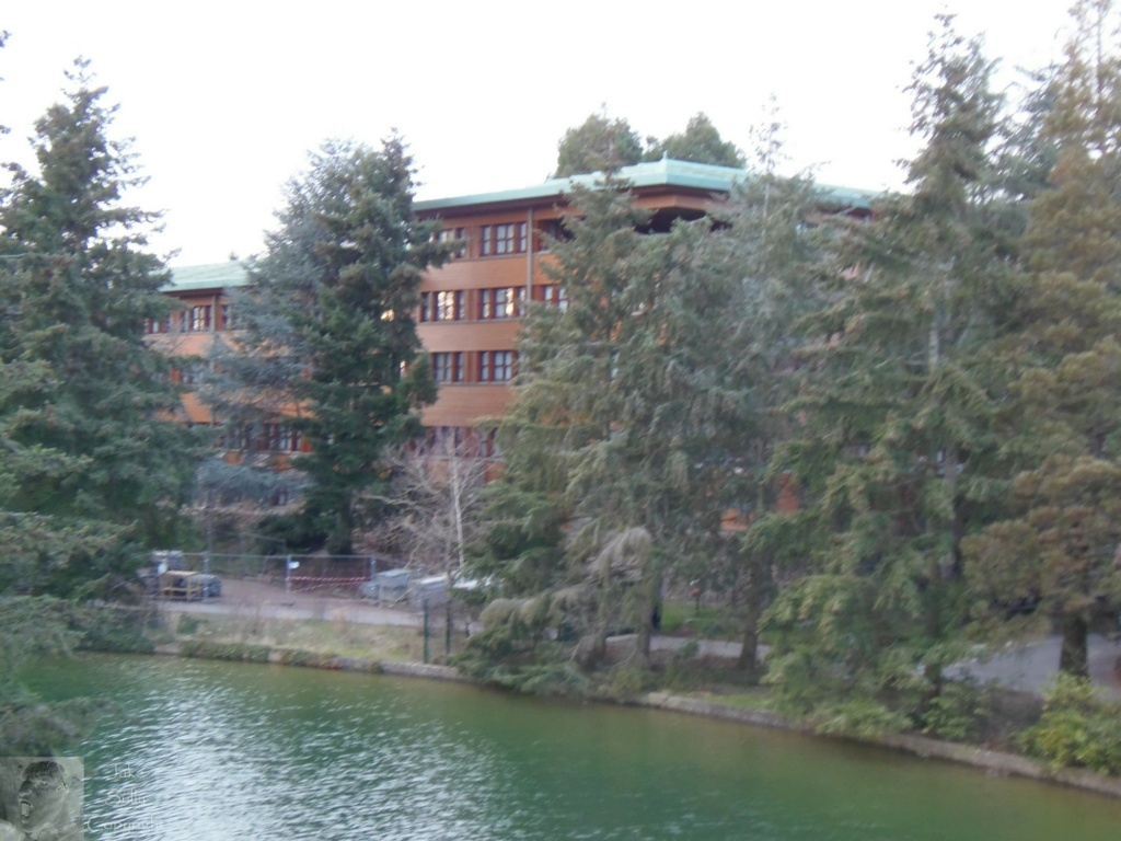 Disney's Sequoia Lodge - Rénovation - Page 2 59_cop10
