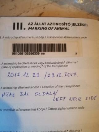 Shaka Karmacs lebt jetzt glücklich in Österreich A9443c10