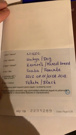 Nicky lebt glücklich in Österreich und Zeno von Andrea Img-3024