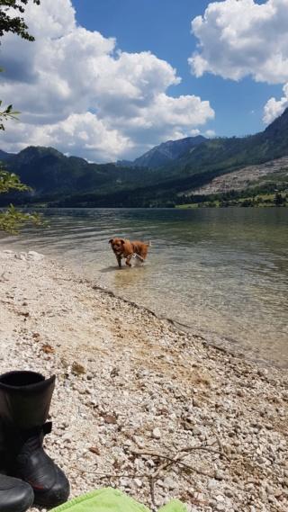 Julius Karmacs lebt glücklich in Österreich Img-3183