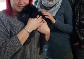 Tibsy /Luna (von Joya) PS Steiermark lebt jetzt glücklich in Österreich Img_2183