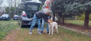 Tenkes Karmacs lebt glücklich in Ungarn Img_2925