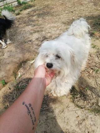 Elinor Karmacs lebt glücklich in Deutschland Img_4630