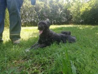 Peggy Karmacs lebt glücklich in Deutschland Img_5415
