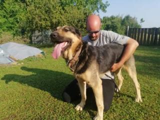 Ubul, Karmacs lebt glücklich in Deutschland Img_9021