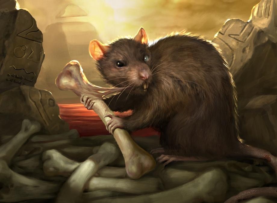 Sombras de Histórias - OFF - Página 12 Rat10