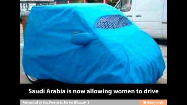 Le voile femme musulmane Img_3410