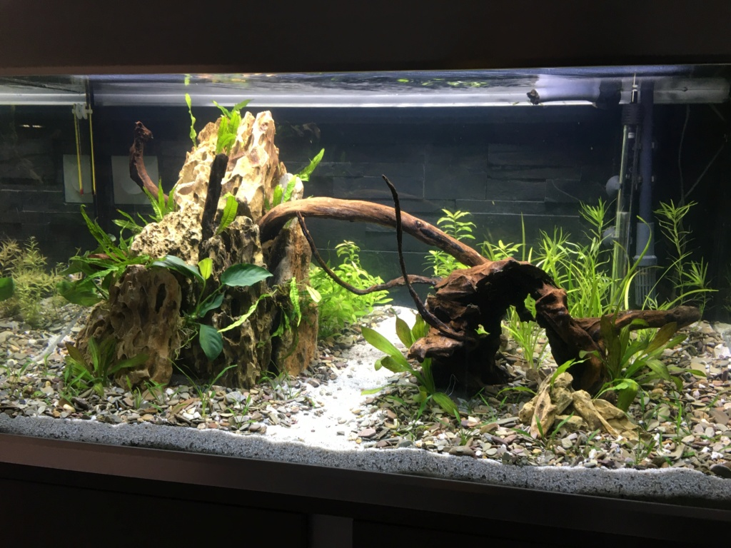 Bac Aquascape 250L De6c3e10
