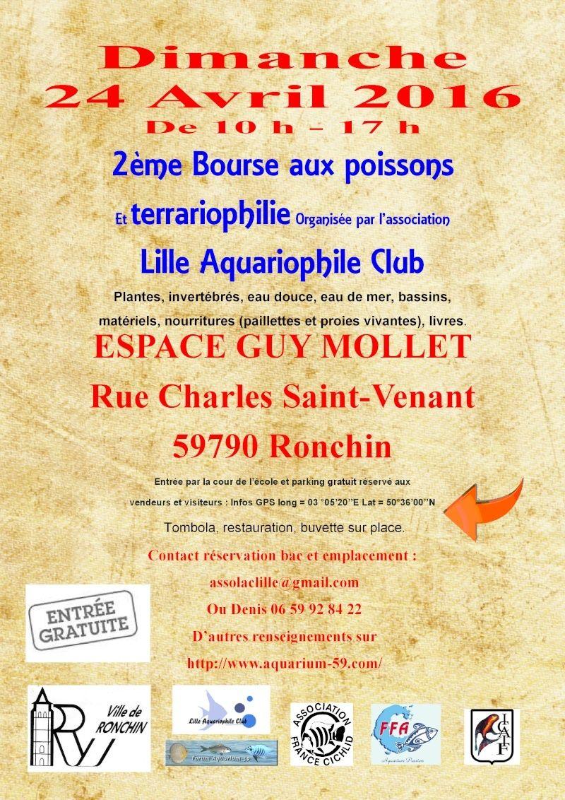 2ème bourse aux poissons de l'association Lille Aquariophile Club Affich11