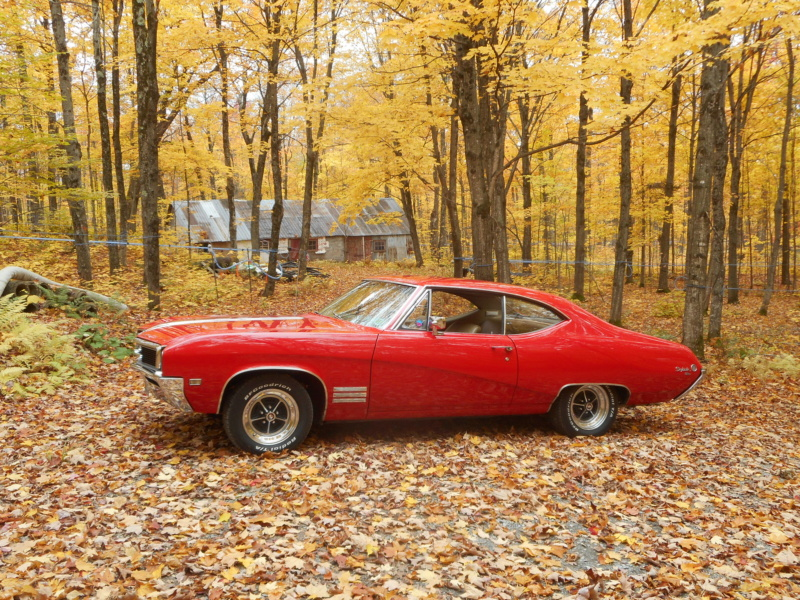 Vos photos d'automne  Automn16