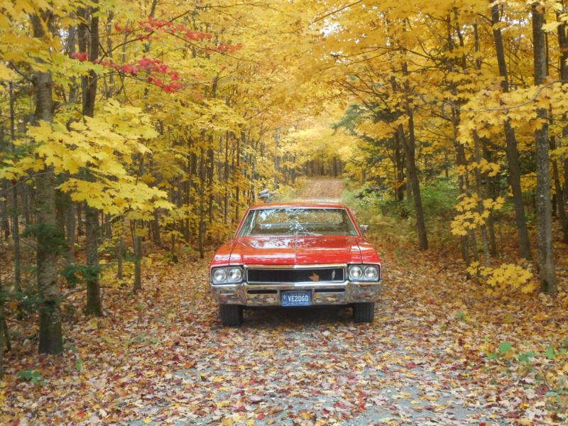 Vos photos d'automne  Automn20