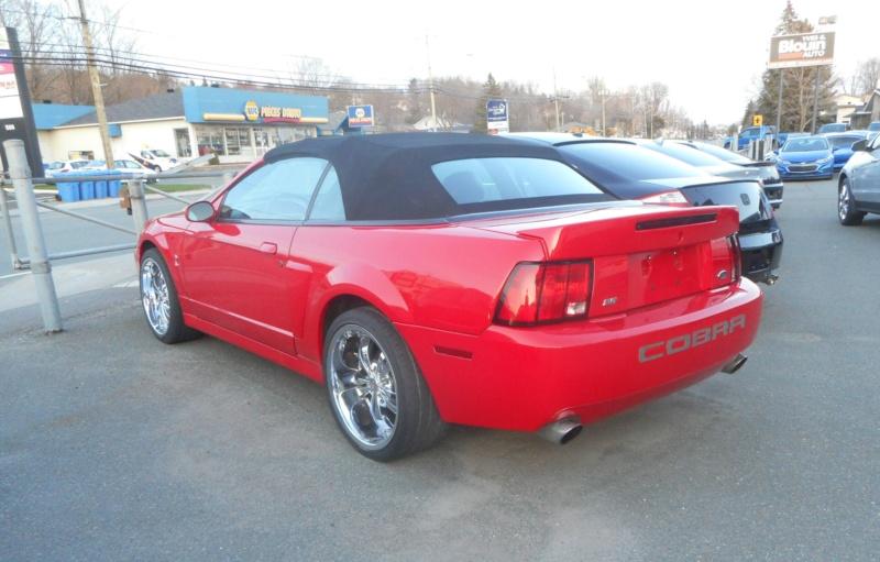 Mustang SN95  Dscn3114