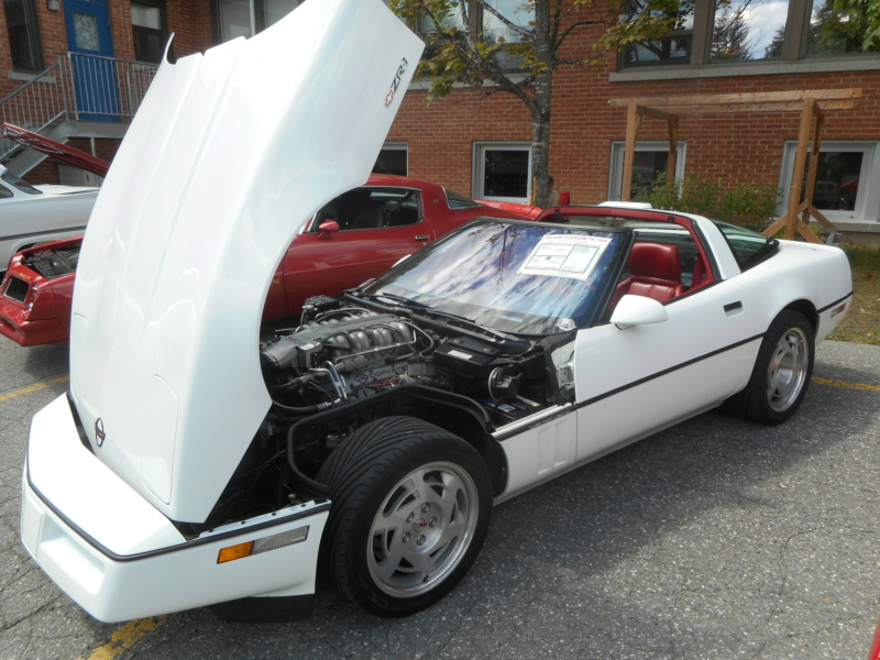 Corvette C4 (1984-1996)  Stcom125