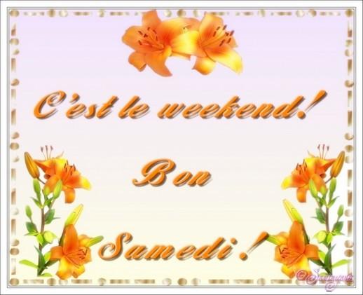 Bonjour - Page 6 99501510