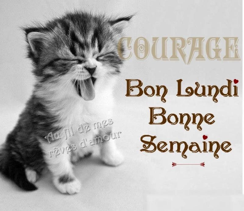Bonjour - Page 6 Lundi_10