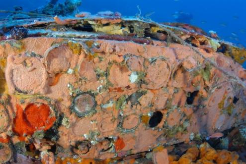Un JUNKERS52 repose sur un banc de sable pendant 65 ans, à 67 mètres de profondeur 11ju10