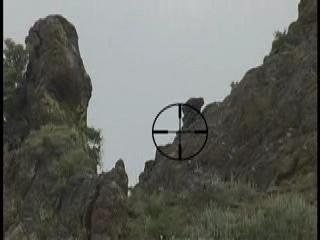 Le tireur de précision en Afghanistan... Tir_ta10