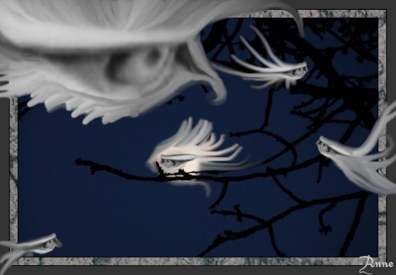 Oiseaux de Lune attrapeurs de rêves Ok11
