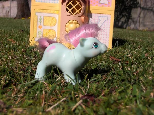 Mes p'tits poney B_cali10