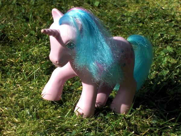 Mes p'tits poney Bouton10