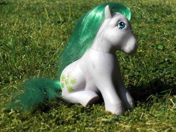 Mes p'tits poney Coquil10