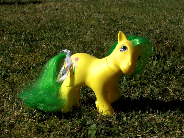 Mes p'tits poney Magiqu10