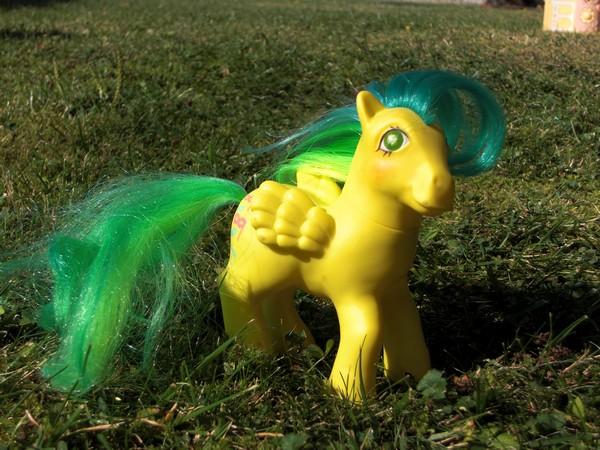 Mes p'tits poney Masqua10