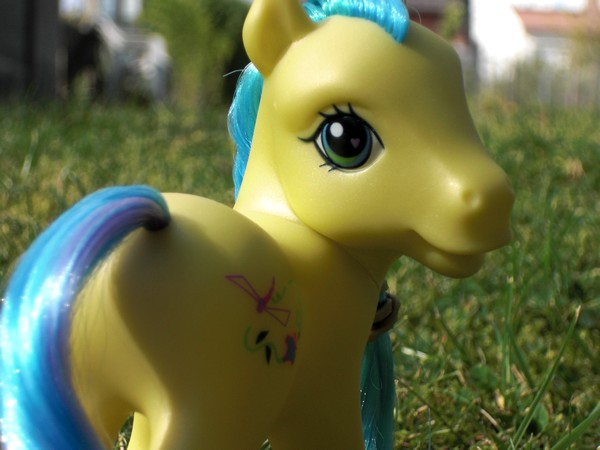 Mes p'tits poney Meadow10