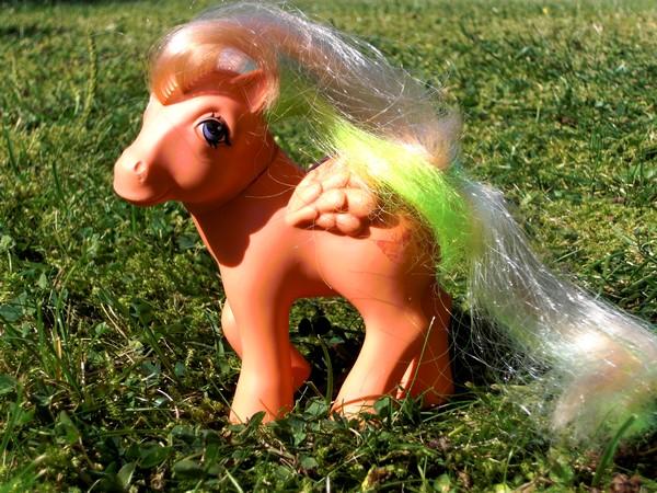 Mes p'tits poney Papill10