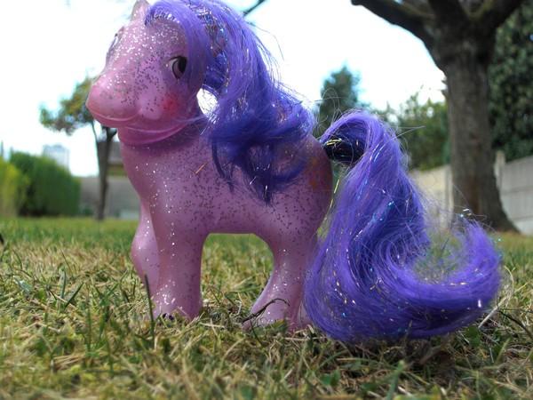 Mes p'tits poney Precie10
