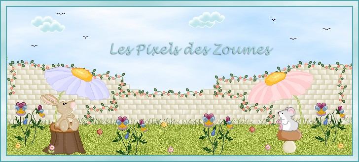 Les pixels des Zoumes
