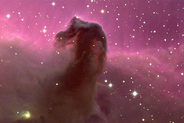 Image du jour (2009 à 2011) Horseh10