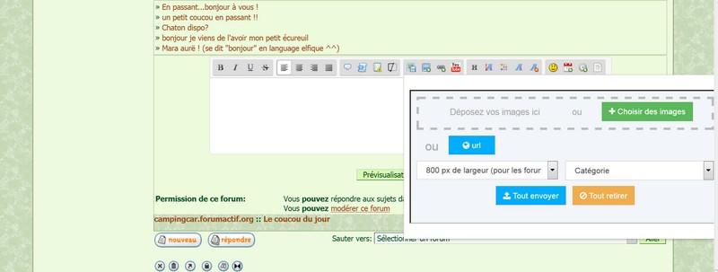 Nouveauté Servimg: Le multiupload, le Drag & Drop et l'insertion directe dans les messages sont enfin arrivés !  - Page 2 Ecran110