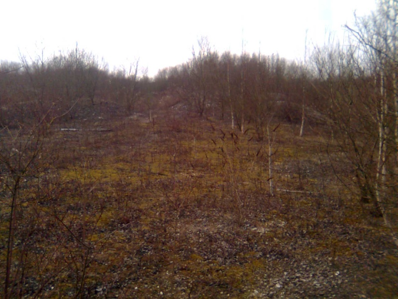 terrain de Cuesmes Photo015