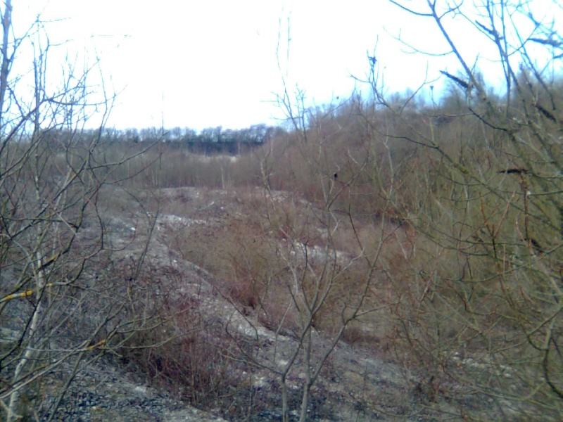 terrain de Cuesmes Photo017