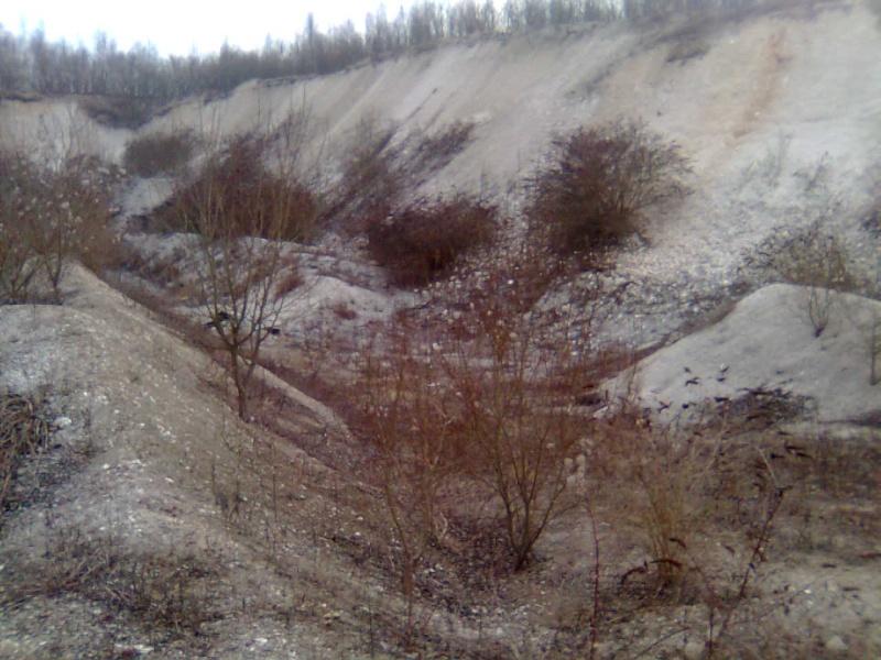 terrain de Cuesmes Photo019