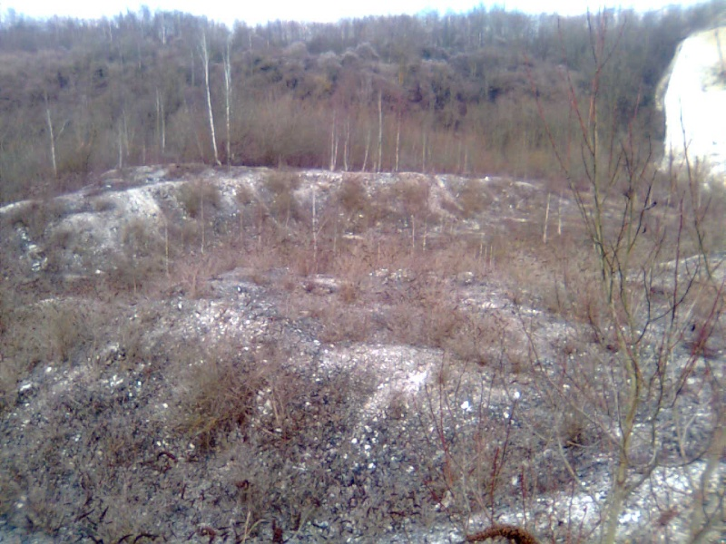 terrain de Cuesmes Photo020