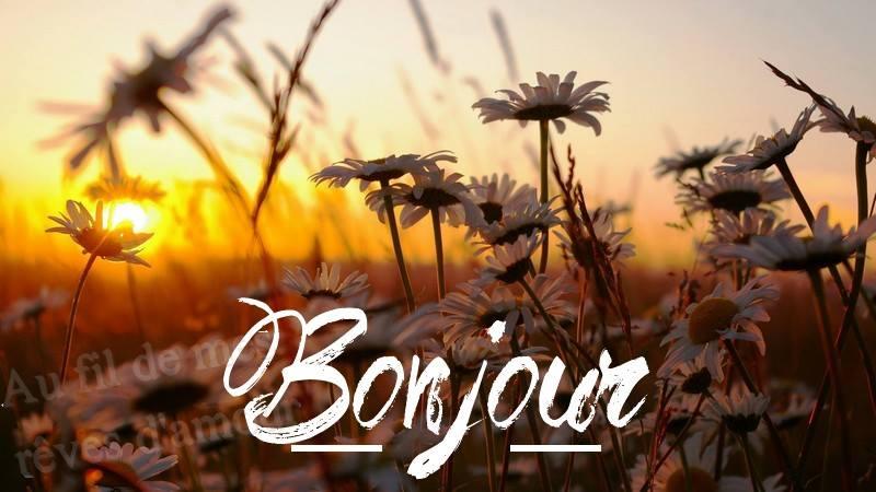 Ici on se dit bonjour  - Page 39 Bonjou11