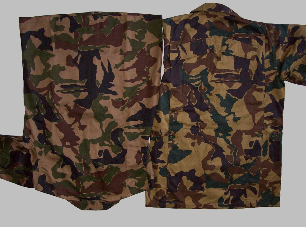 "Japan ""Opposite forces"" camouflage  100_7810"