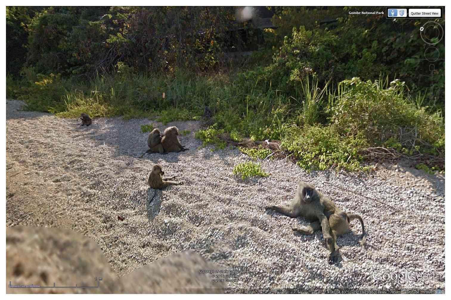 STREET VIEW : les cartes postales de Google Earth - Page 62 Sans_t67