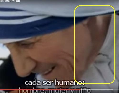 LA MADRE TERESA, UN DEMONIO EN HÁBITO BLANCO Mt12