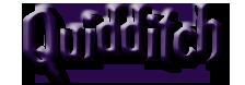 RPG: 10th Anniversary Quidditch Quiddi10